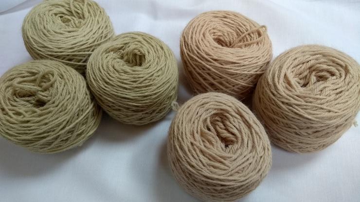 natural_dye_dry_nettles_dock_teinture_naturelle_orties_oseille_épinard_laine_yarn[1]