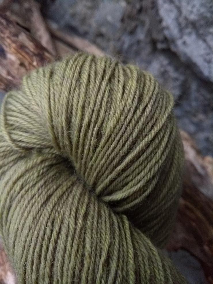 curcuma bois de campêcheteinture végétale naturelle laine teinte plantes irlande hand dyed yarn plant natural wool gift knitter fingering winter dyeing tumeric logwood sionnach yarn