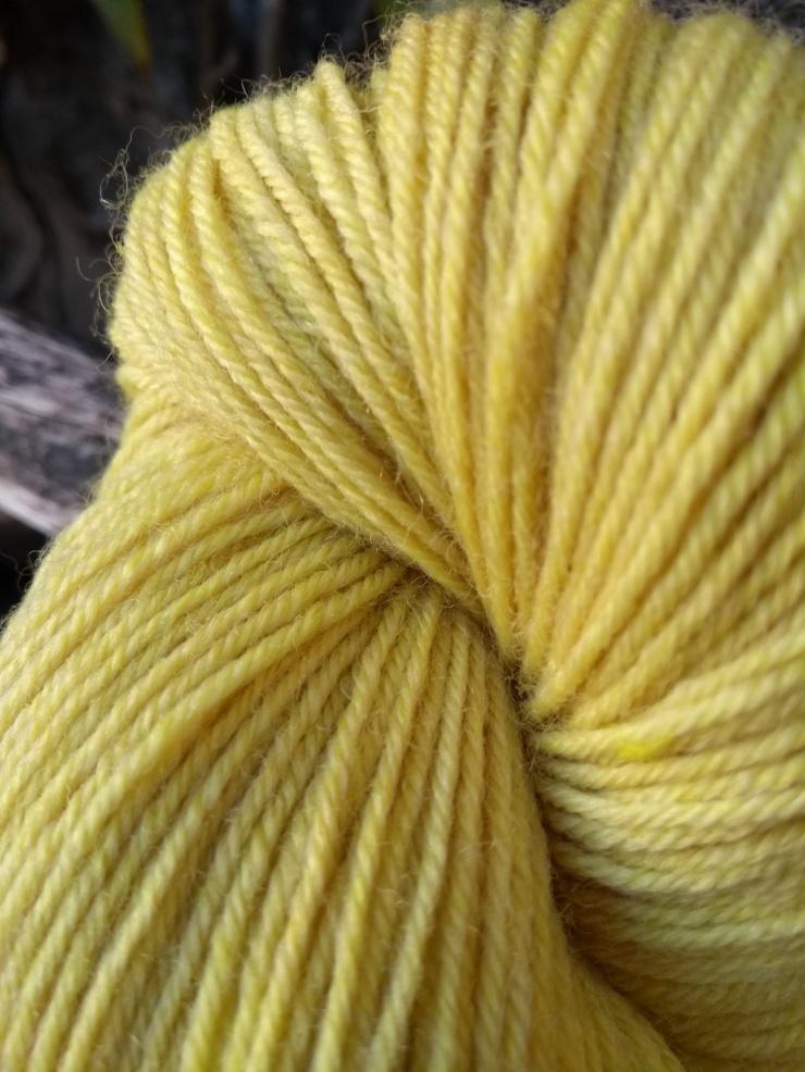 curcuma tumeric teinture végétale naturelle laine teinte plantes irlande artisanale hand dyed yarn plant natural wool gift knitter fingering winter dyeing zero waste sionnach yarns (4