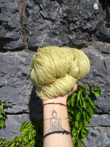 teinture laine fingering ortie naturelle végétale laine teinte main irlandenettle dyeing expérience (5)